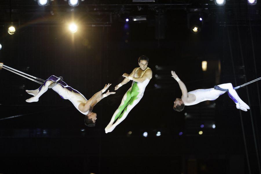 Gymnasts performing