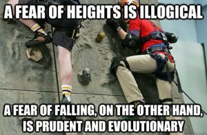 meme about fear of heights