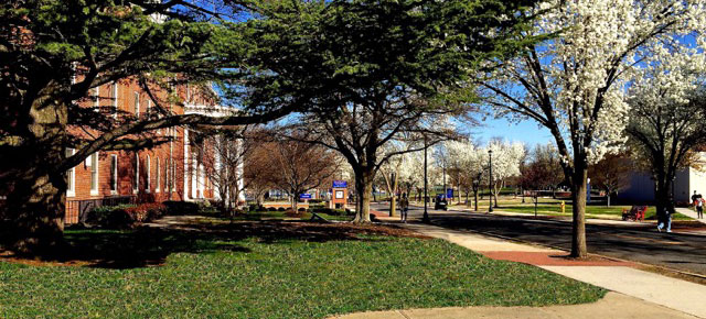 Jobs and Opportunities for Students at Virginia State University