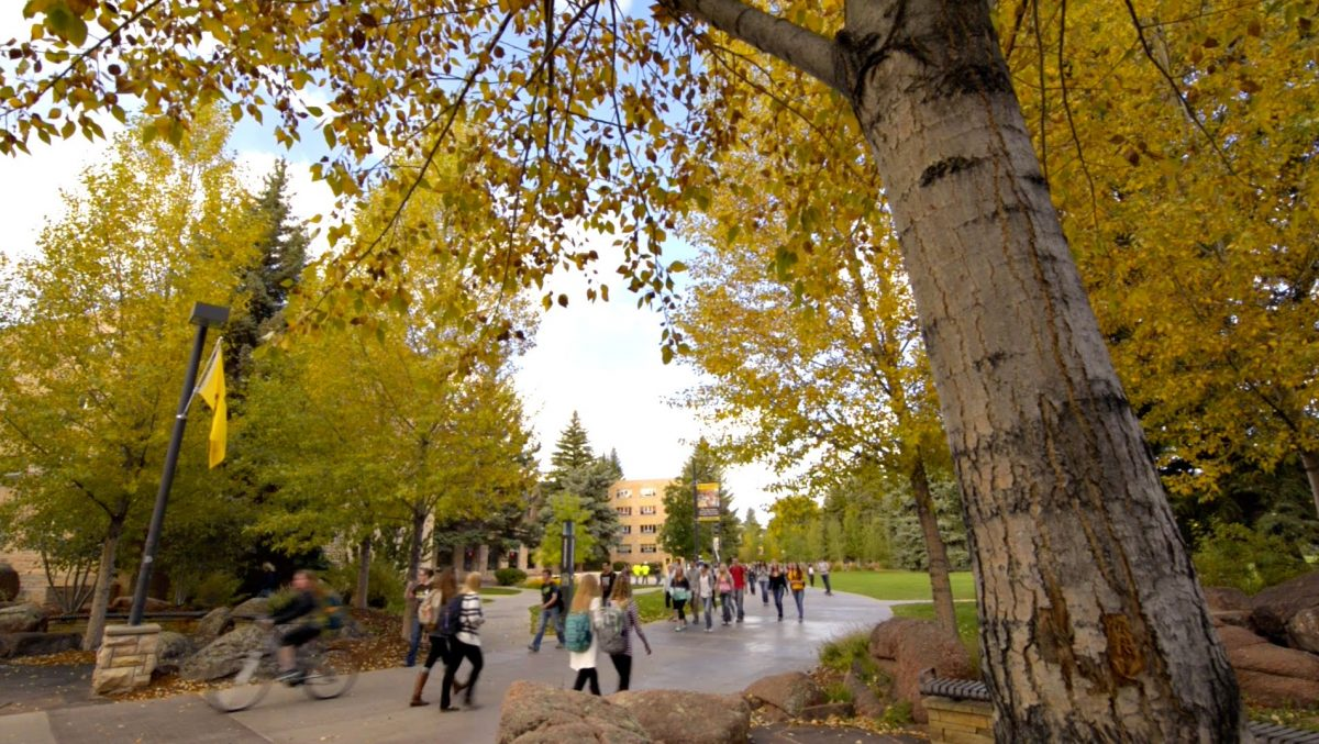 Restaurants & Cafes for Students at University of Wyoming
