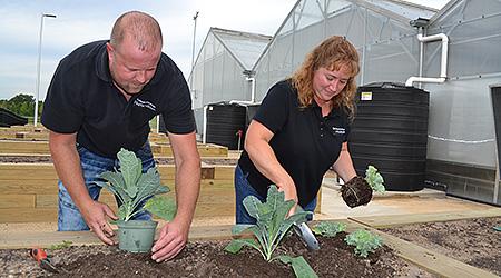 urban agriculture lab