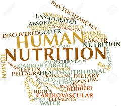 Word cloud about human nutrition