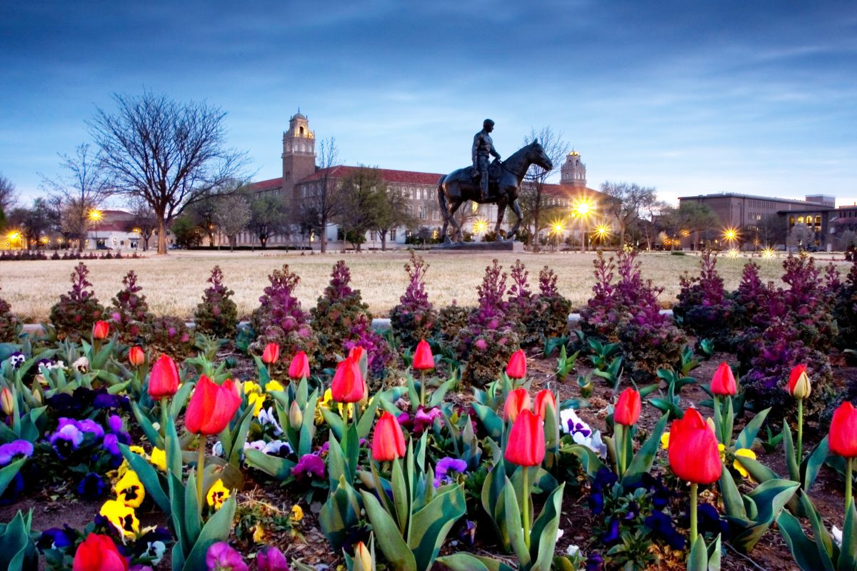 Jobs and Opportunities at Texas Tech University