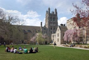 Restaurants and Cafes For Students at Yale