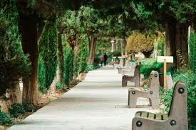 Picture of nature and seats arranged along a path
