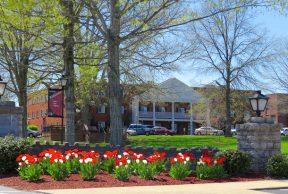 10 Coolest Courses at Campbellsville University