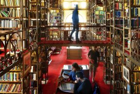 10 Coolest Courses at Cornell University
