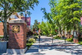 Top 10 Coolest classes at Chico State University