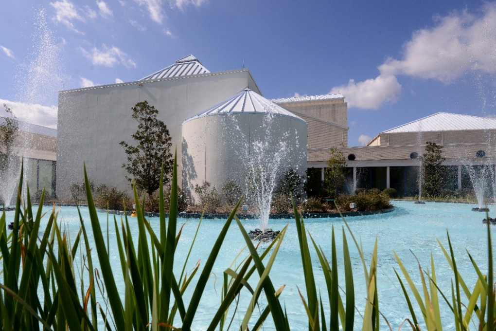 ?10 Coolest Courses at the University of West Florida