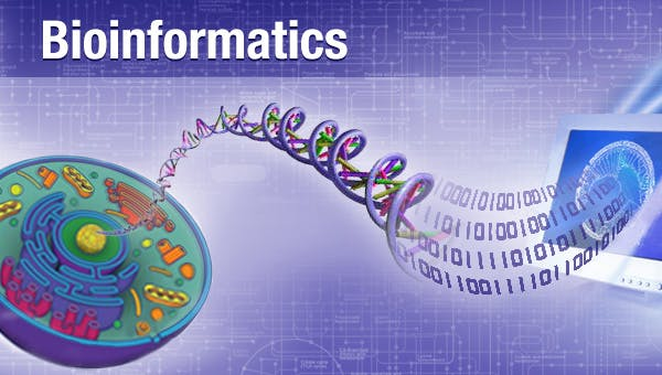 Bioinformatics? illustrated by DNA from cell reaching out and unravelling into digital numbers