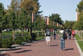 Jobs and Opportunities for Students at University of the Pacific