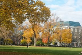 Restaurants and Cafes for Students at Fordham University