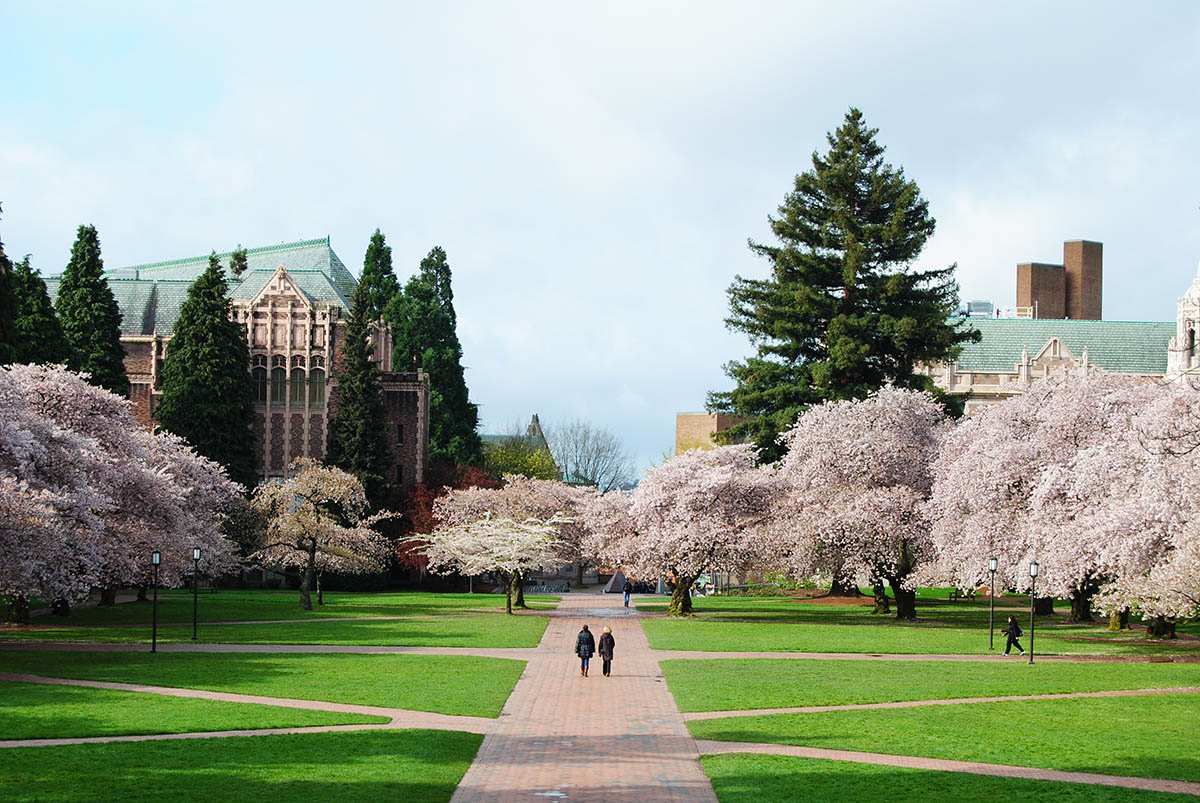 university of washington past exams