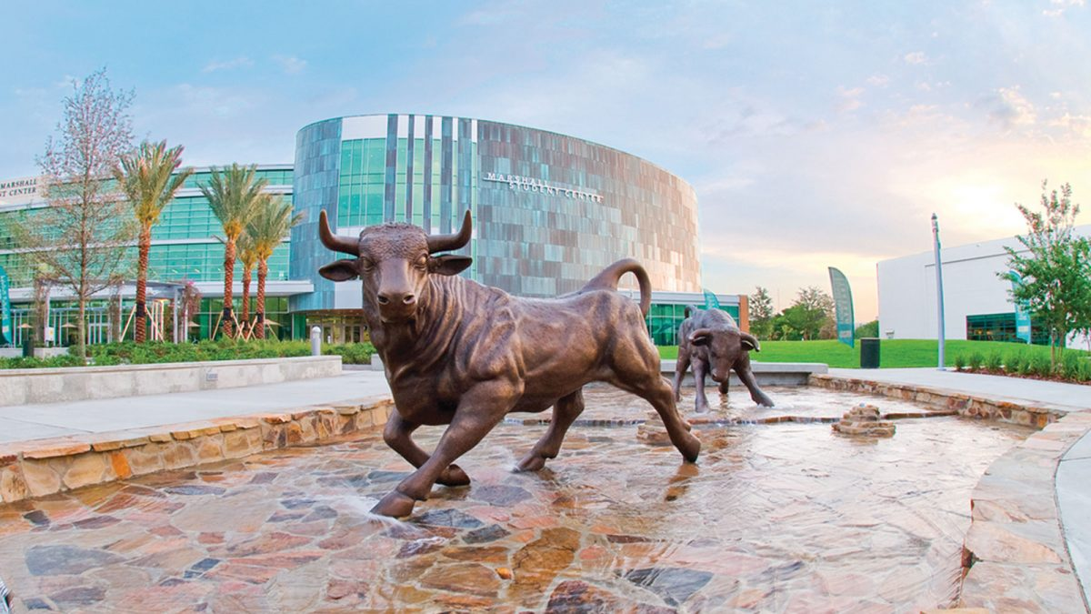 Jobs for College Students at University of South Florida