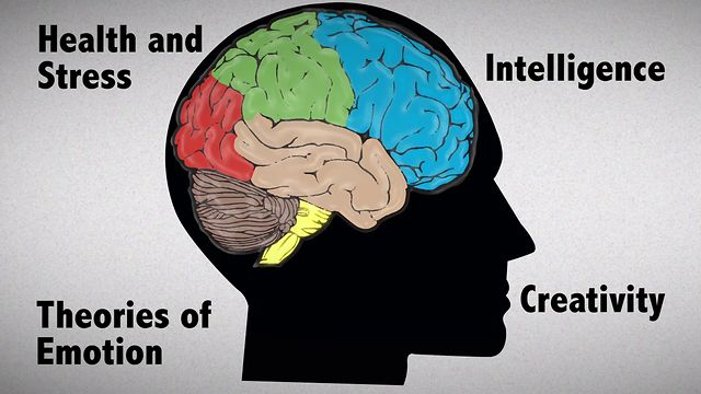 division of human brain as per psychological emotions