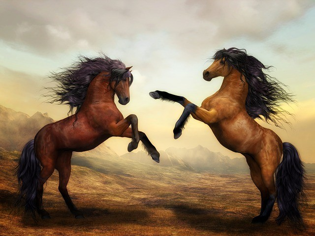 painting of 2 horses