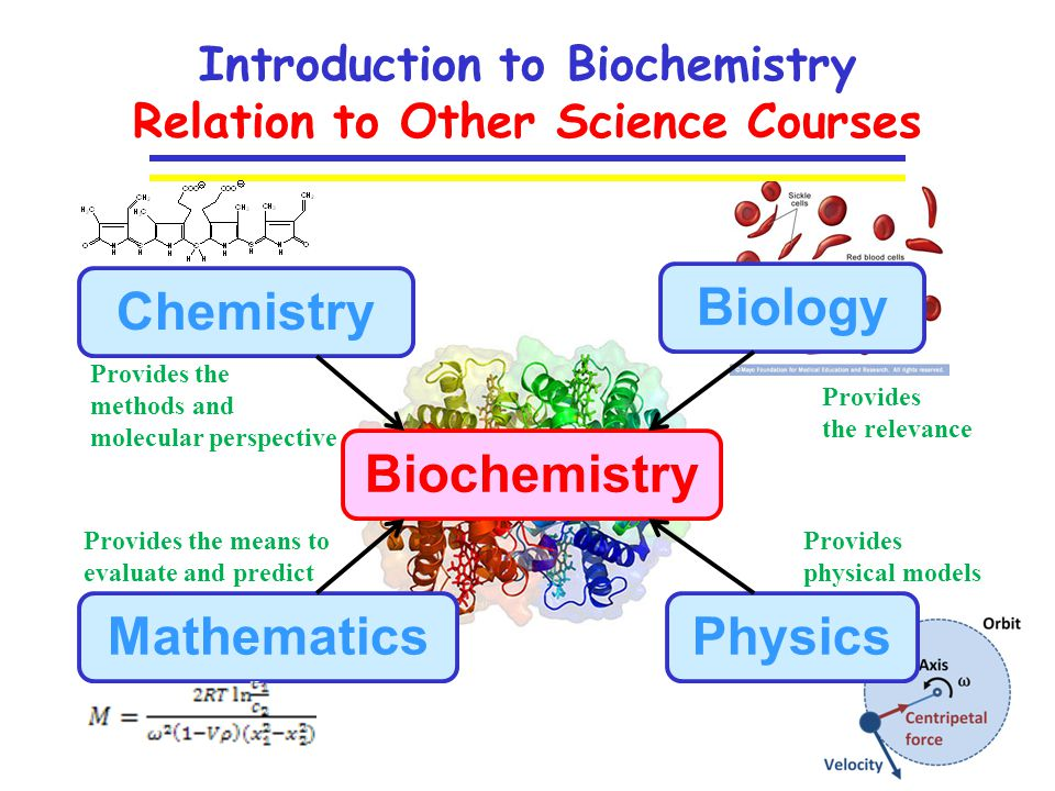biochemistry and its relation with others sciences