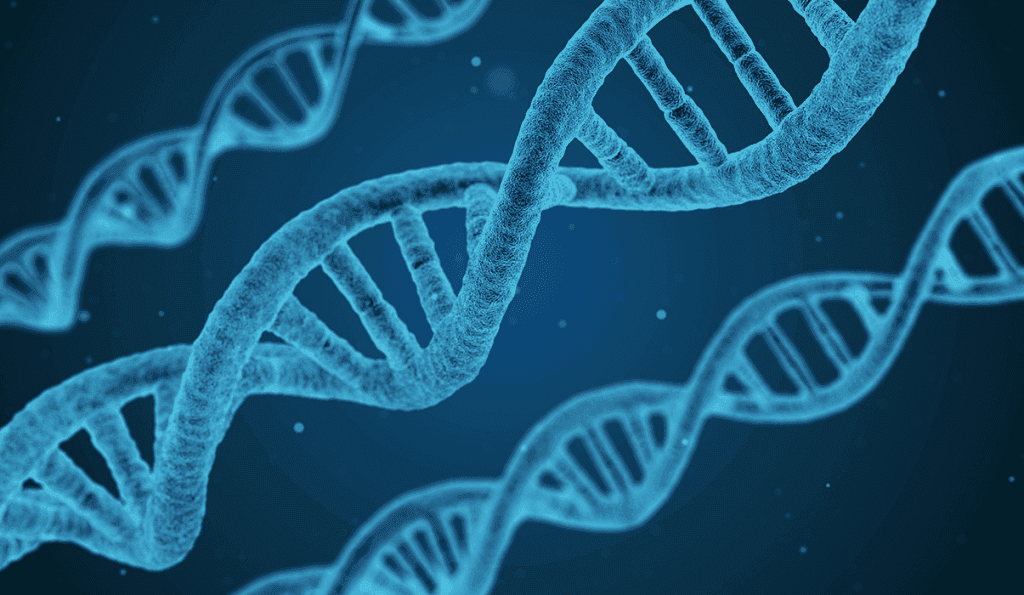 Studying DNA and other aspects