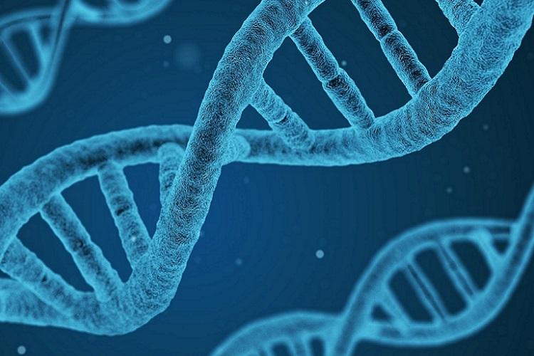 The rising tide of genetic data
