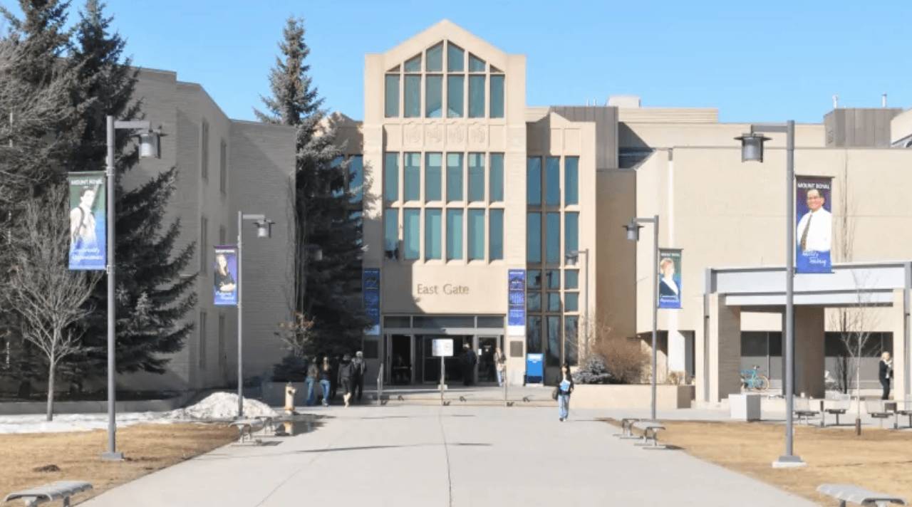 Top 5 Startups from Mount Royal University