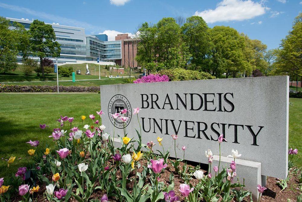 10 Hardest Courses at Brandeis University