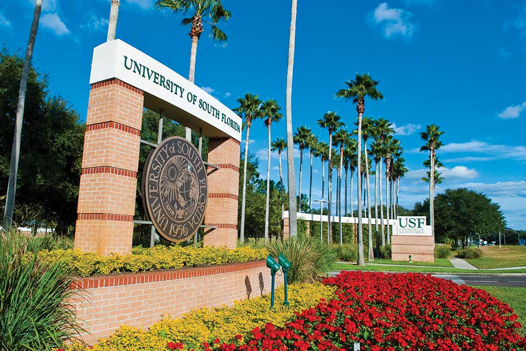 10 Hardest Courses at the University of South Florida