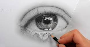 drawing of human eye