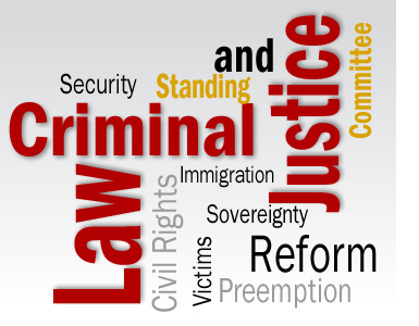 criminal law and related concepts
