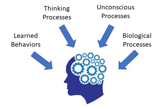 Several components of Abnormal Psychology