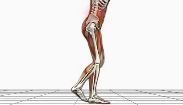 Image of an Advanced Biomechanics