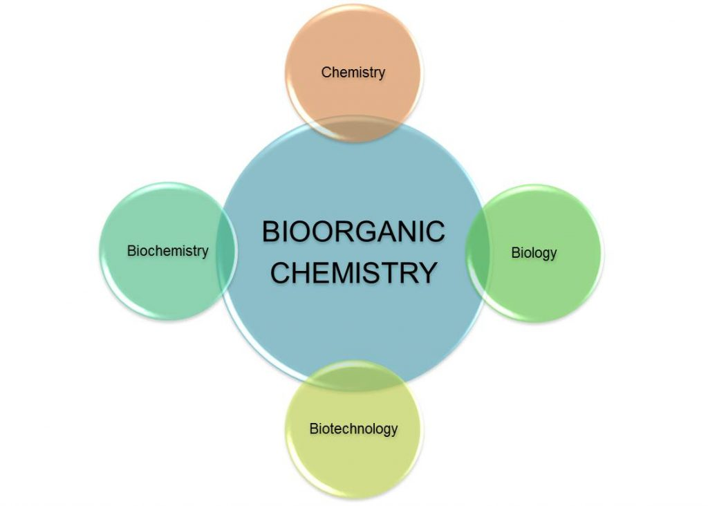 Various components of Bioorganic Chemistry