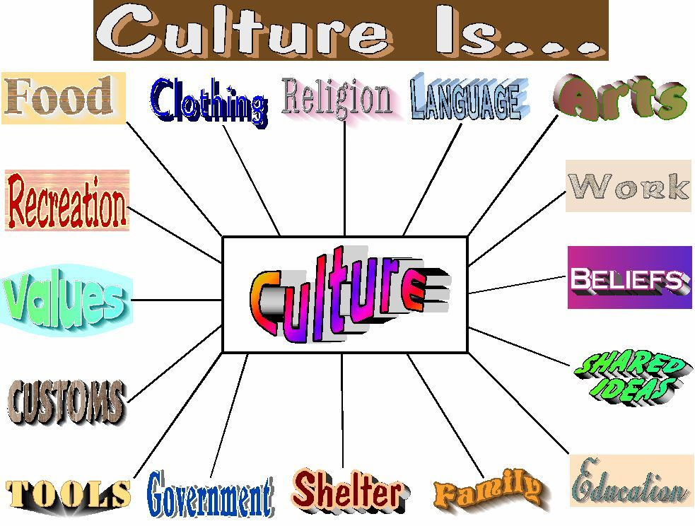 Study of Culture & Society-SCS