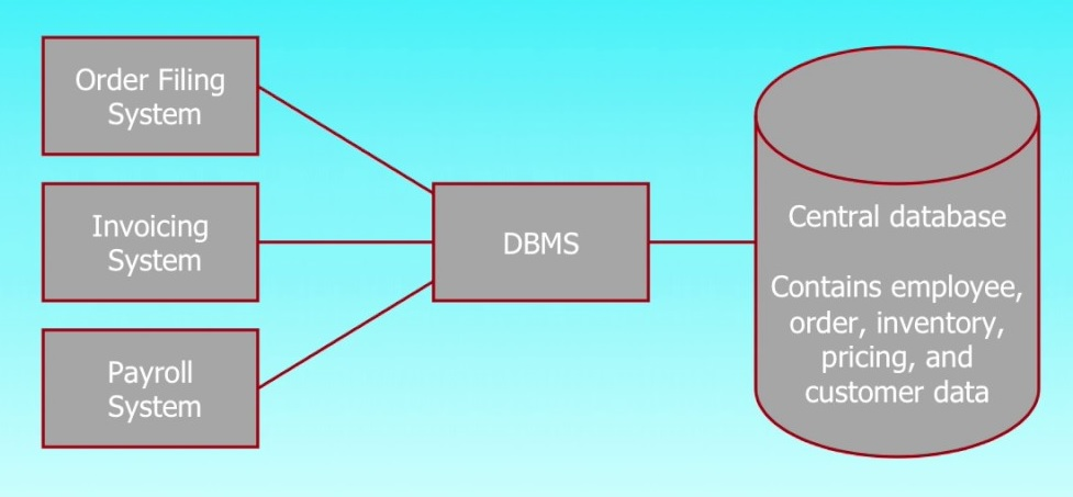 An illustration of the Database Management Systems
