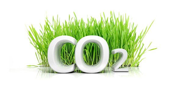 An image of CO2 in front of grass