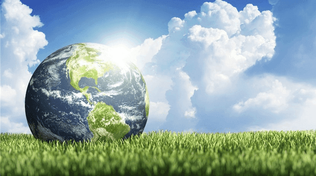 A picture of Environmental Philosophy