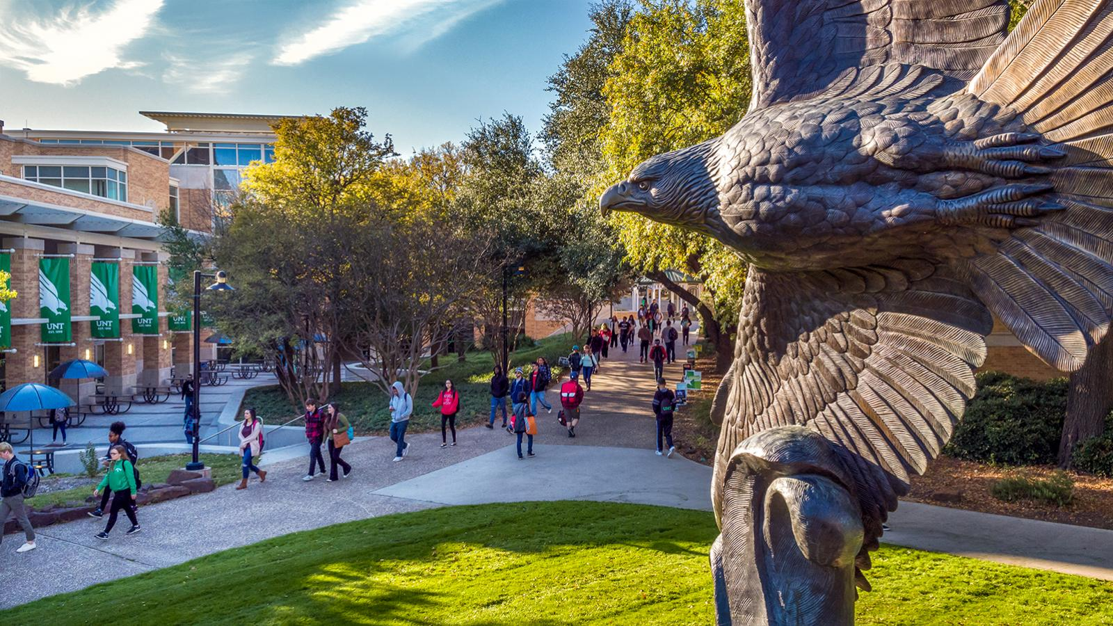 10 Hardest Courses at the University of North Texas