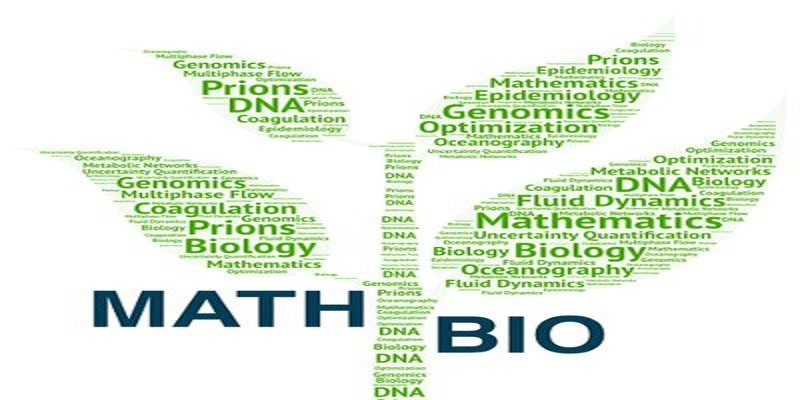Introduction to Math Models in Biology represente dby leafs made out of words