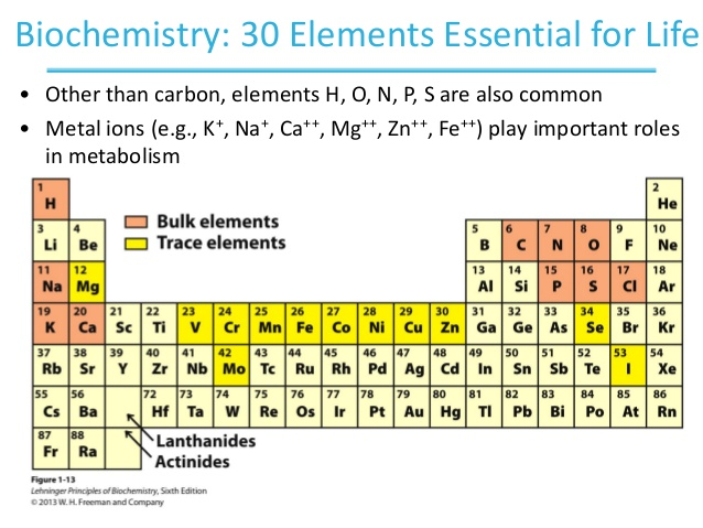 This picture depicts the periodic table and elements essential for life.