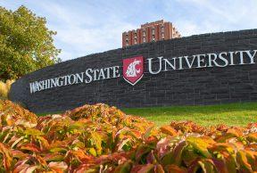 10 Hardest Courses at Washington State University