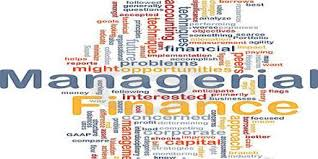 Word cloud of some of the main terms in managerial finance