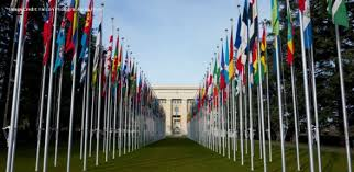 Picture of the flags of many countries lined up leading down pathway to a building