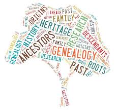 wordcloud made into the shape of a tree with words relatd to genealogy.