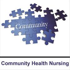 This image is a reminder of all of the pieces that go into community health nursing., with the word community making a puzzle