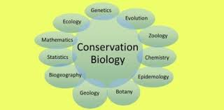 This image portrays the many parts of conservation biology.