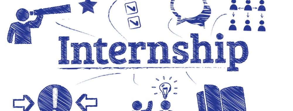 picture of internship sketch
