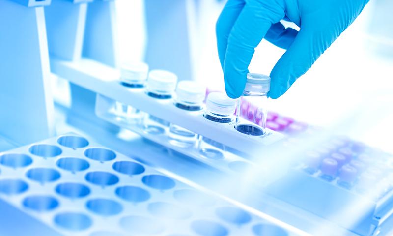 Molecular biology kits and supplements