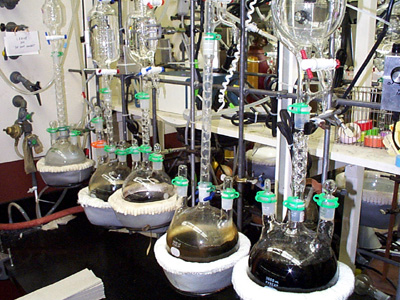 This picture shows an experiment in progress in a chemistry lab