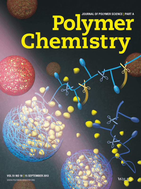 A POLYMER CHEMISTRY textbook cover