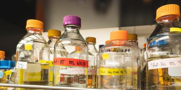 Chemistry bottles use for laboratory experiments