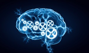 picture of brain with cogs in it